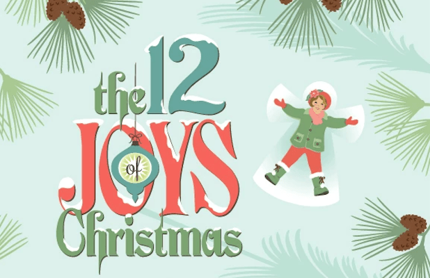 12 joys of christmas book