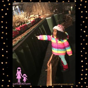 NYBG Holiday Train Show