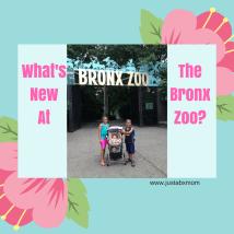 bronx zoo family membership