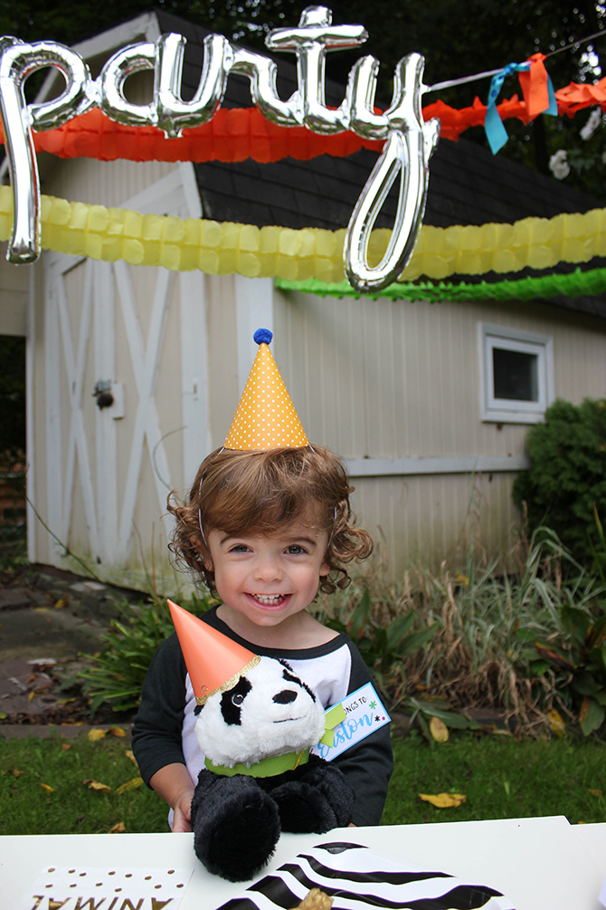 Party animal, zoo party, lion, elephant, giraffe, zebra, party, kids party, bubbles, wild animals, bold, birthday, birthday boy, DIY, party decor, panda, party like a panda, pandamonium