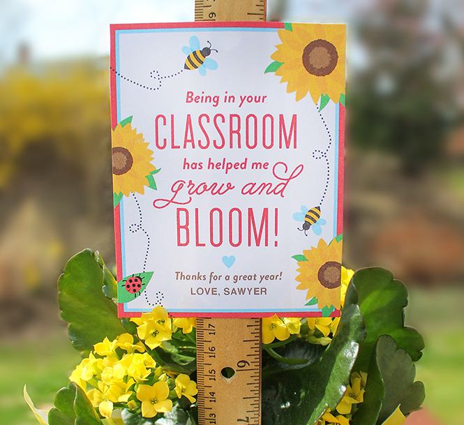 flower teacher gift, flower gift, teacher appreciation, teacher gift, free printable gift tag, gift tags, teacher, school,