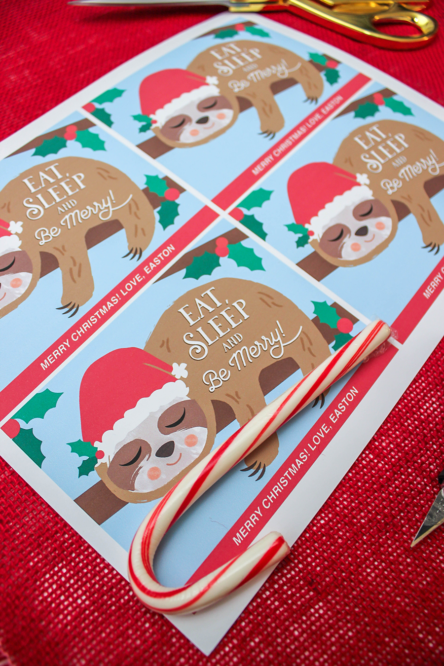 Christmas Sloth Gift Ideas, slow ho ho, eat sleep and be merry, christmas sloth, sloth, classroom gifts, christmas gifts, free printables, Just Add Confetti, candy cane, sloth stuffed animal, sloth plush, sloth candy cane holder, etsy,