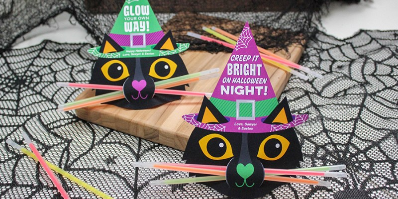 Black Cat Glow Stick Halloween Gift