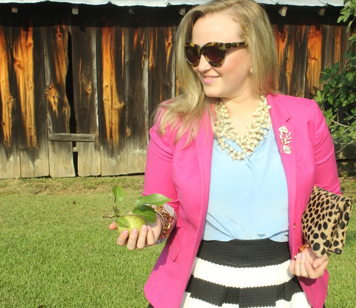 Striped Skirt Fuchsia Blazer Leopard Clutch