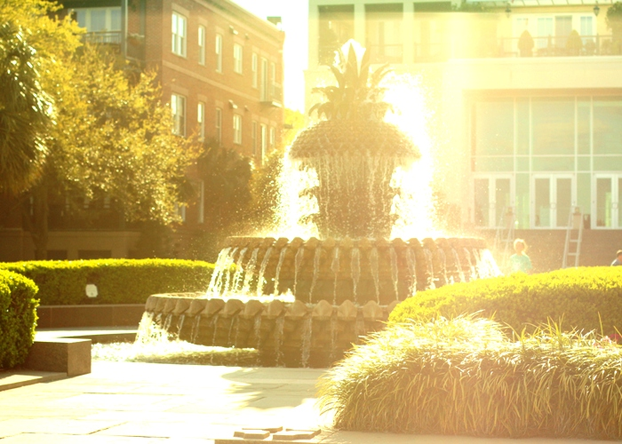 Pineapple Fountain Sunset