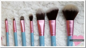 sigma_bunnycollection_brushes2_thumb