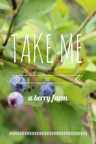 take me to a berry farm