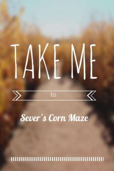 take me to sever's corn maze copy