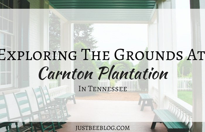 Exploring the Grounds at Carnton Plantation