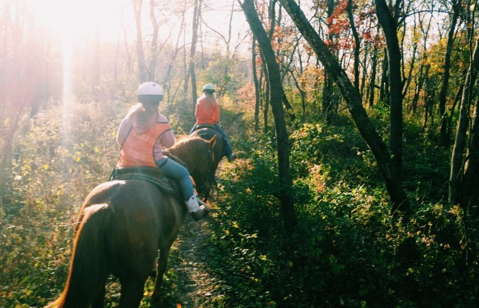 Trail Ride on a Fall Day