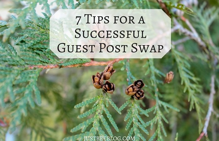 7 Tips for a Successful Guest Post Swap