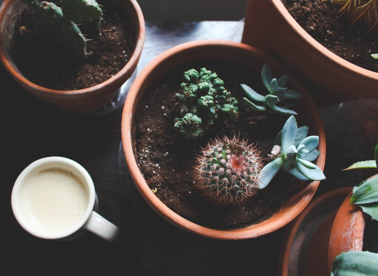 How to Recreate That Coffee Shop Feel At Home - Just Bee Blog