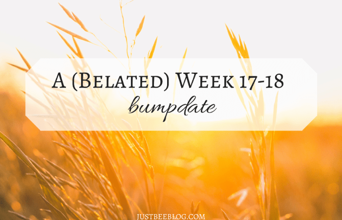 A (Belated) Week 17-18 Bumpdate