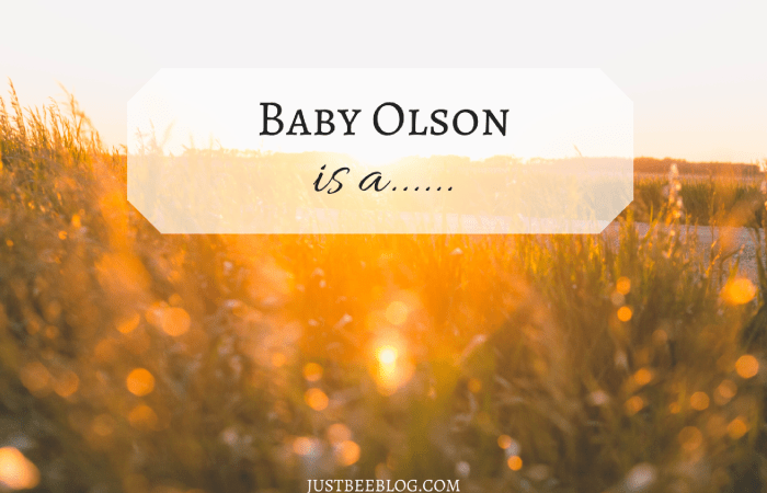 Baby Olson is a…