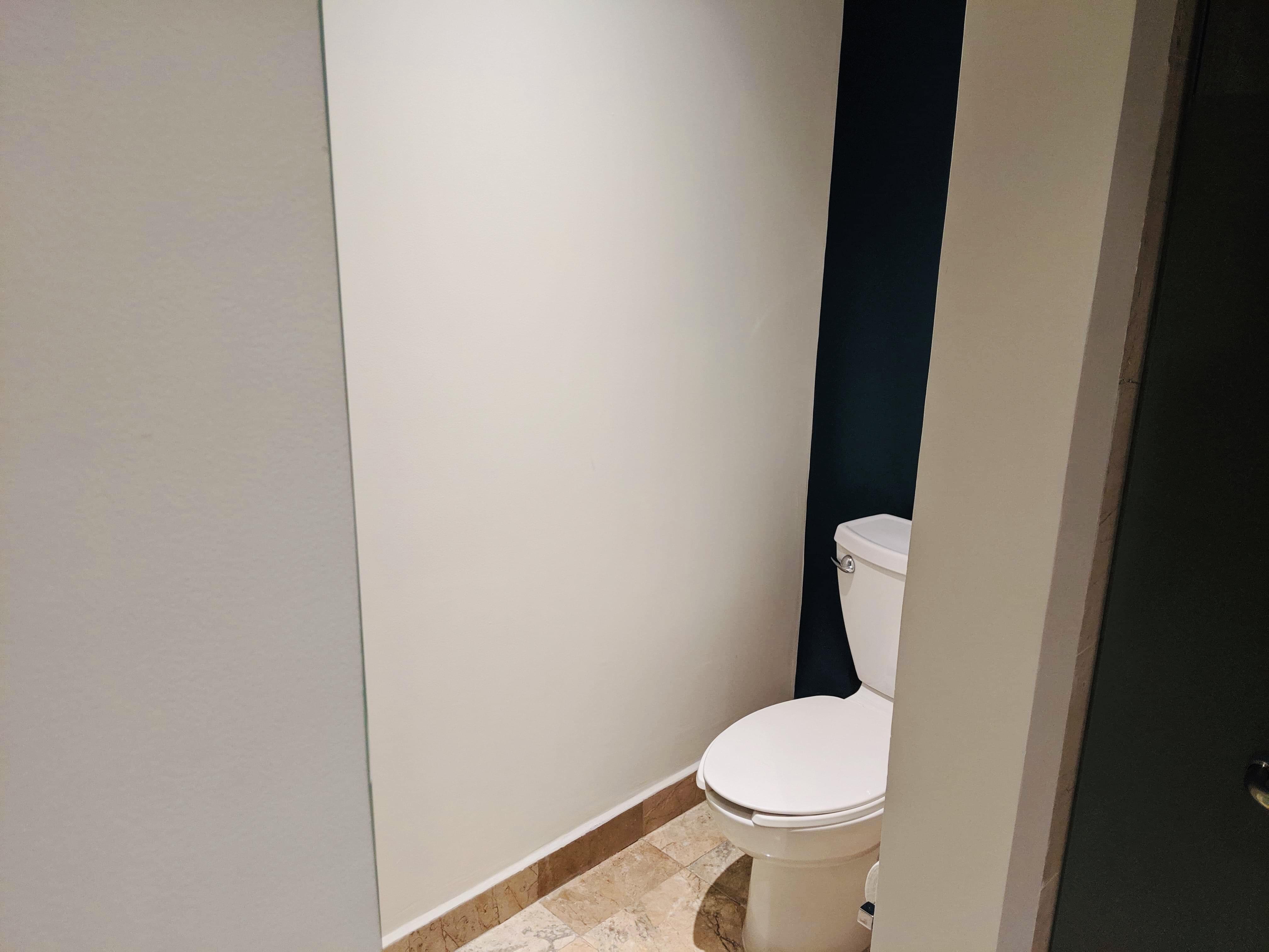 Marriott hotel toilet
