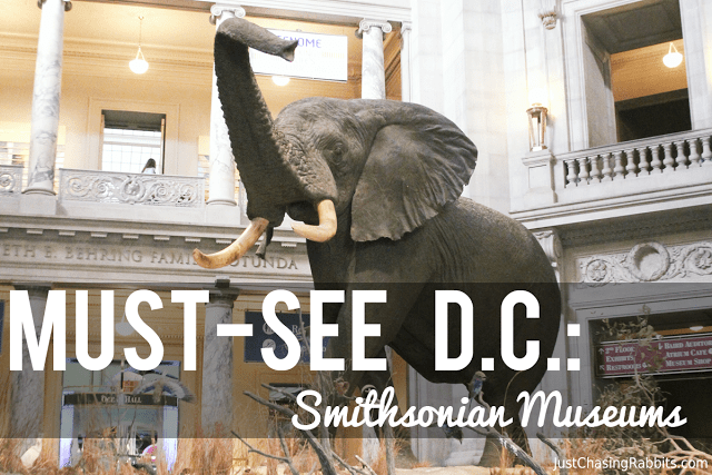 Must-See Washington, DC Smithsonian Museums