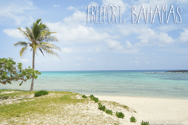 A Day in Freeport, Bahamas: Nature, Snorkeling, and Conch Fritters