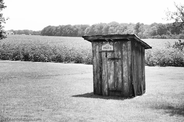 Frogmore Plantation Privy Outhouse