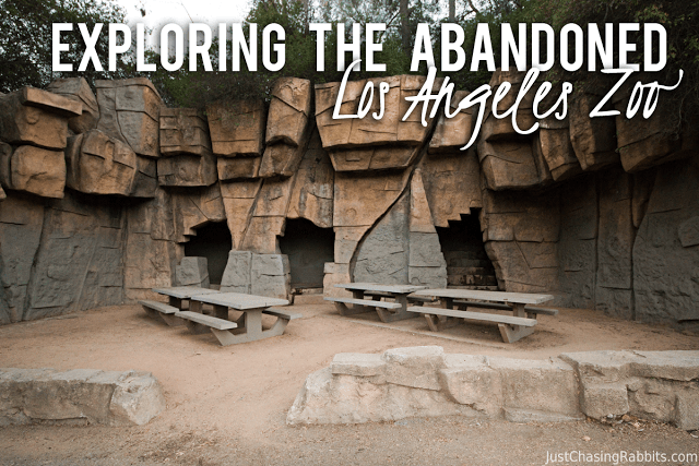 Exploring the Abandoned Los Angeles Zoo