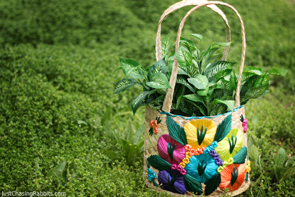 Our Favorite Souvenirs from the Bahamas including Handmade Basket