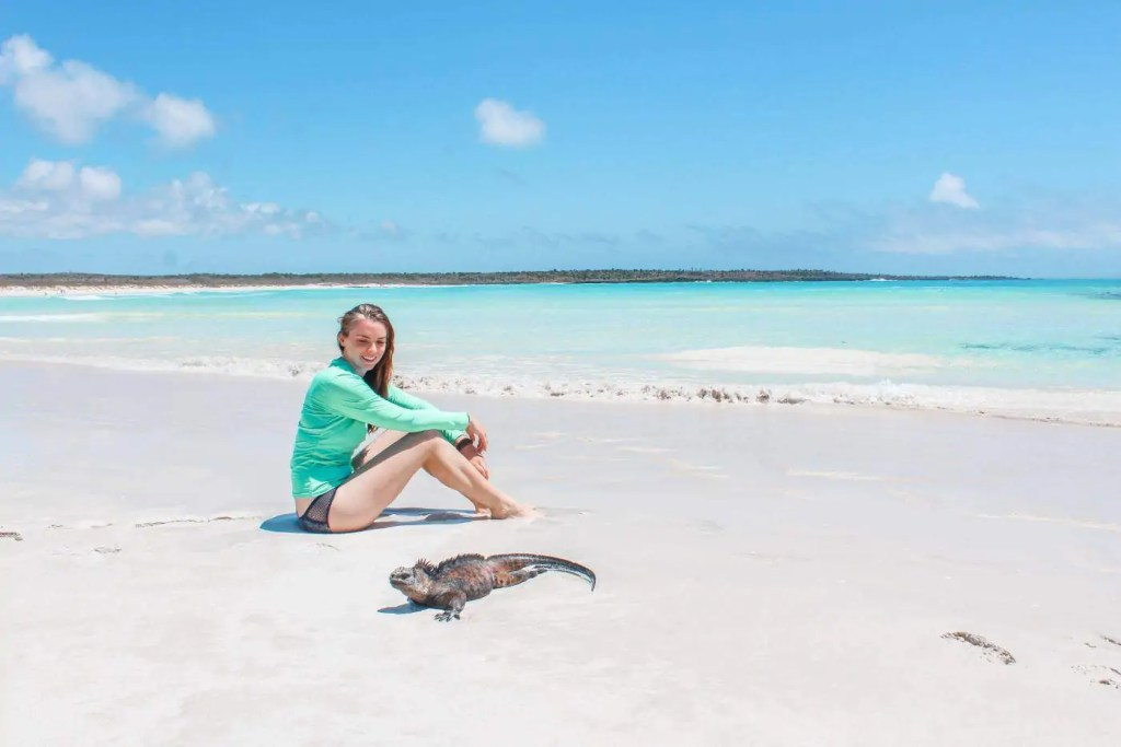 Thing to do on the Galapagos on a budget: Chill with the Iguana Sunbathing after a Swim
