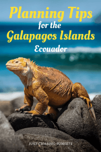 planning tips for the galapagos islands