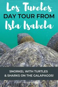 Los Tuneles Day Tour