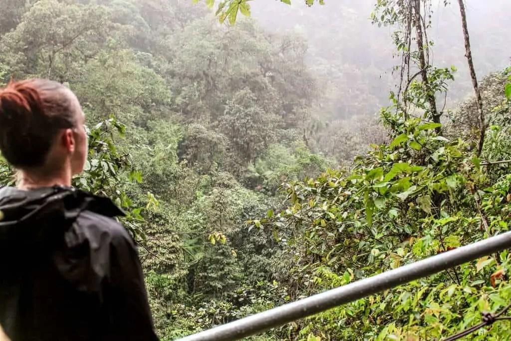 Mindo cloud forest, Ecuador