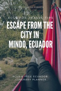 escape to mindo cloud forest