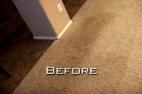San Diego Carpet Dyeing Services   Carpet Dyeing in San Diego CA     San Diego Carpet Dyeing Before