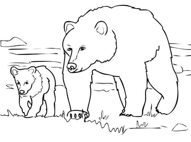 Bears to print - Bears Kids Coloring Pages