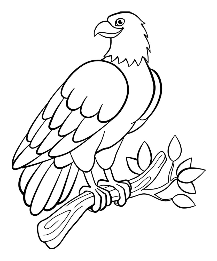 birds to print  birds kids coloring pages