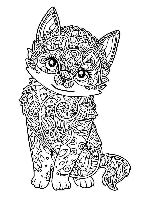 cat color page # 3