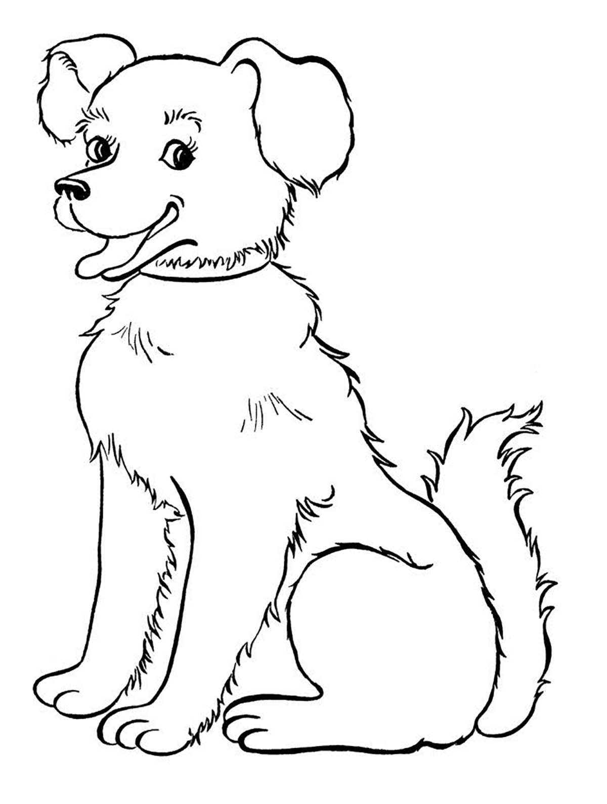Puppy Pictures To Color For Kids