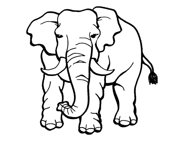 Elephants to print for free - Elephants Kids Coloring Pages