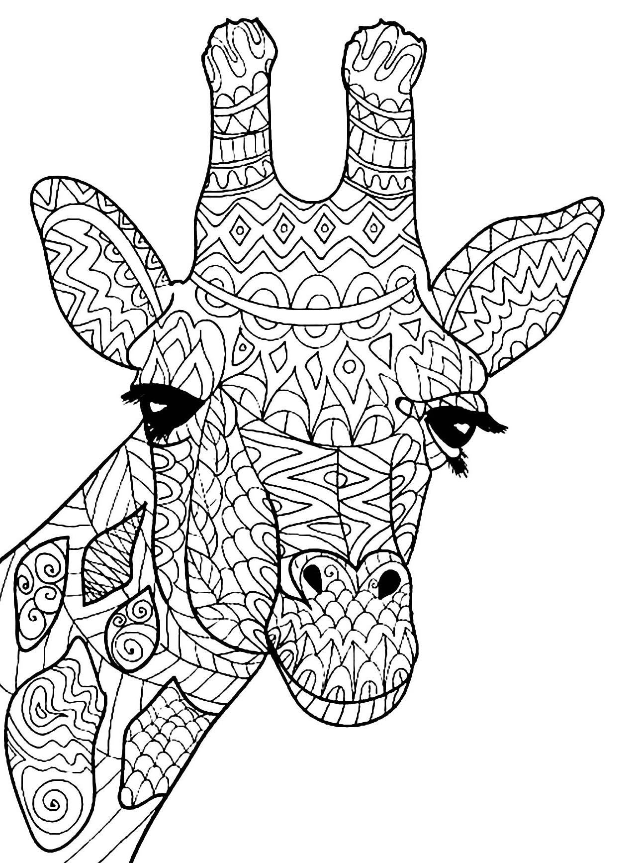 Giraffes For Kids Giraffes Kids Coloring Pages