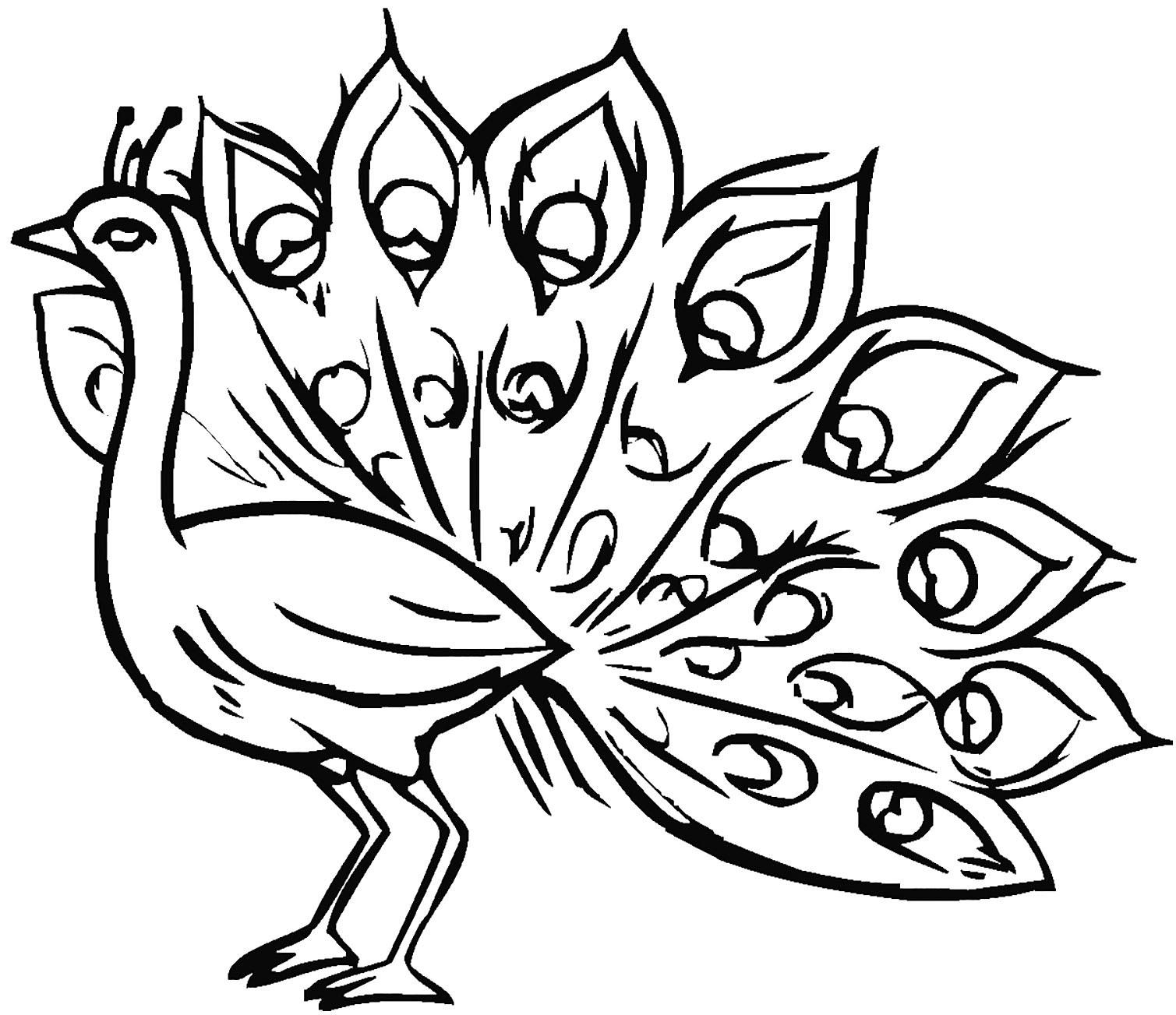 Peacocks To Color For Kids