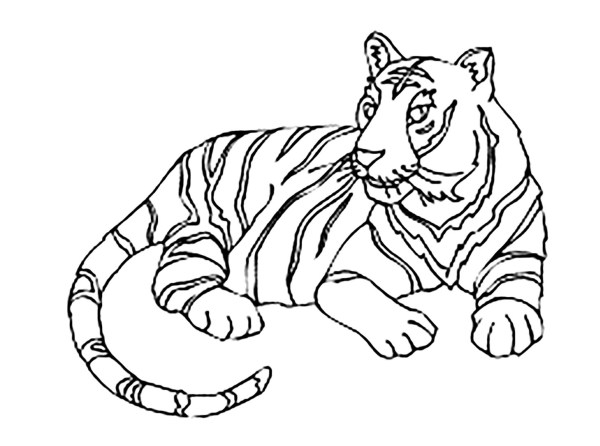 coloring pages of tigers # 4