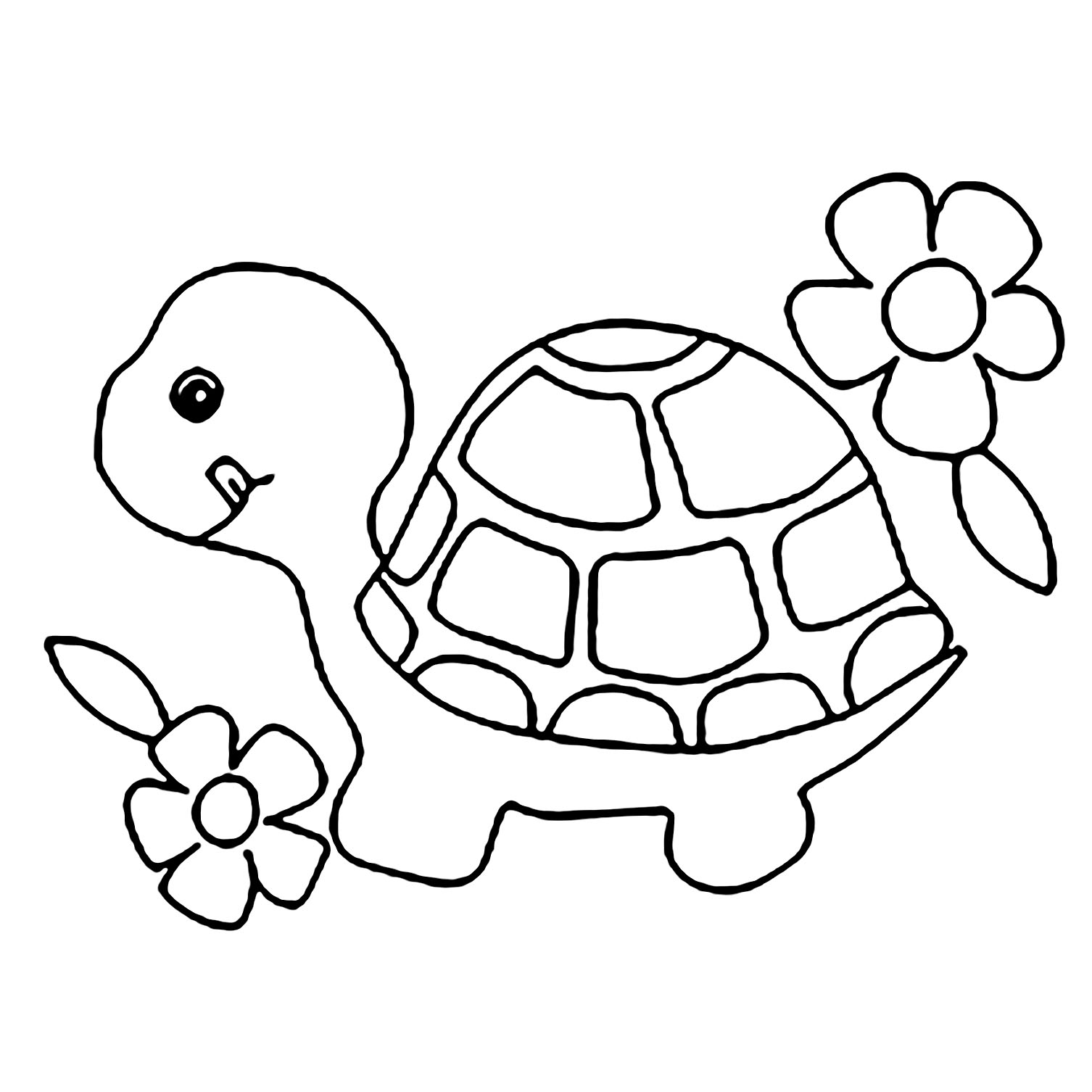 Turtles To Download For Free