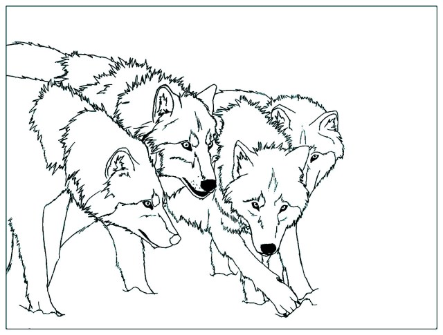 Wolf to color for kids - Wolf Kids Coloring Pages