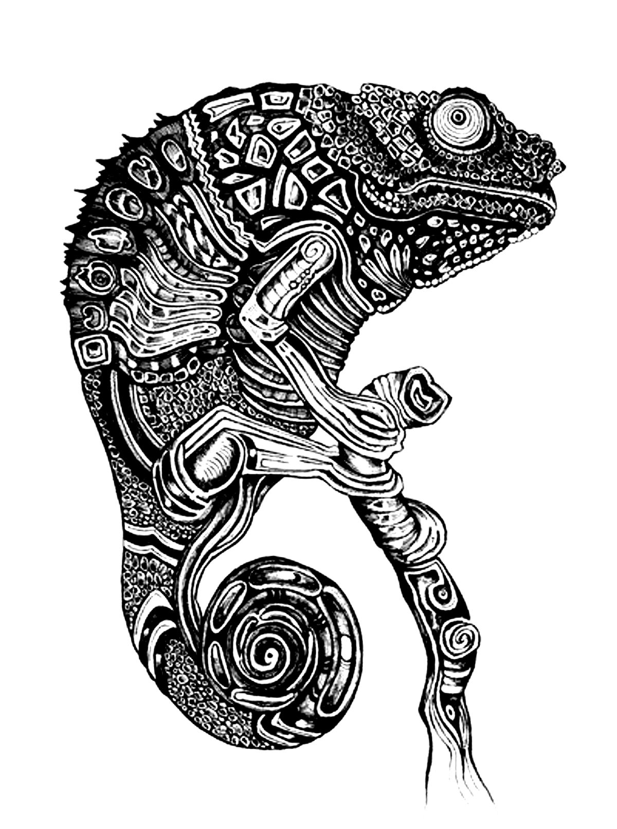 Difficult Cameleon Animals Coloring Pages For Adults Justcolor