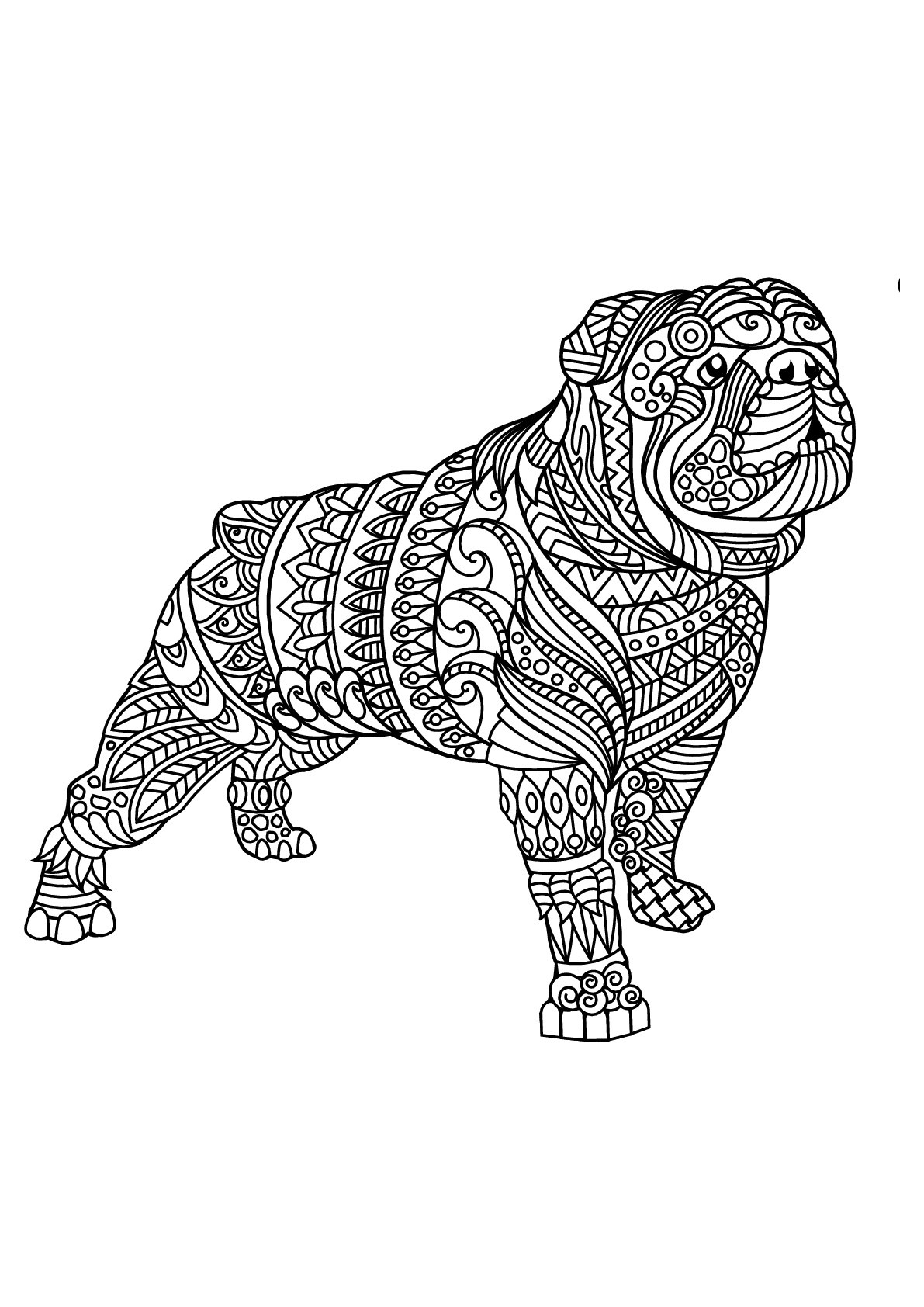 Free Book Bulldog 2 Dogs Adult Coloring Pages