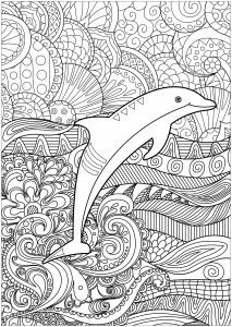Images Of Dolphin Coloring Sheets