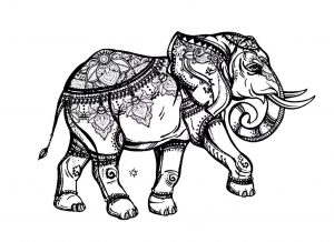 coloring pages of elephants # 15