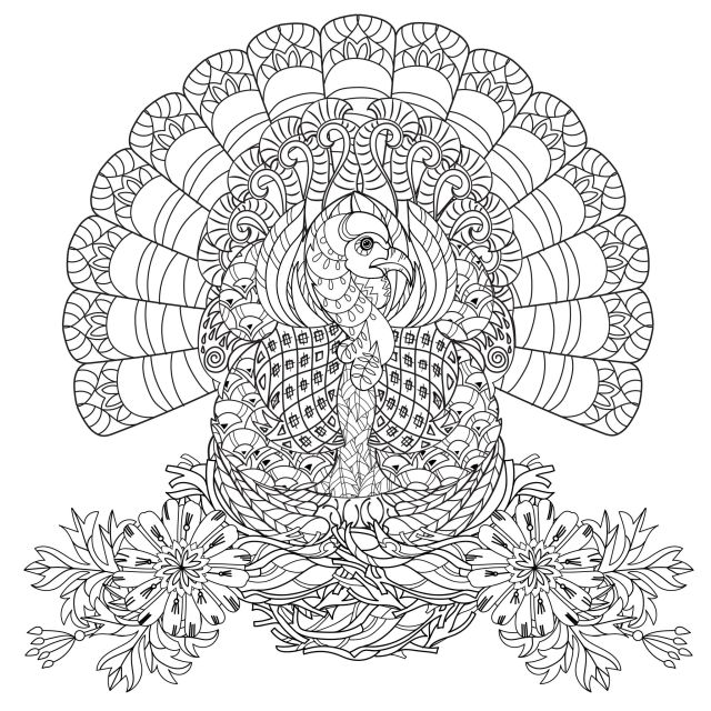 Thanksgiving turkey - Thanksgiving Adult Coloring Pages