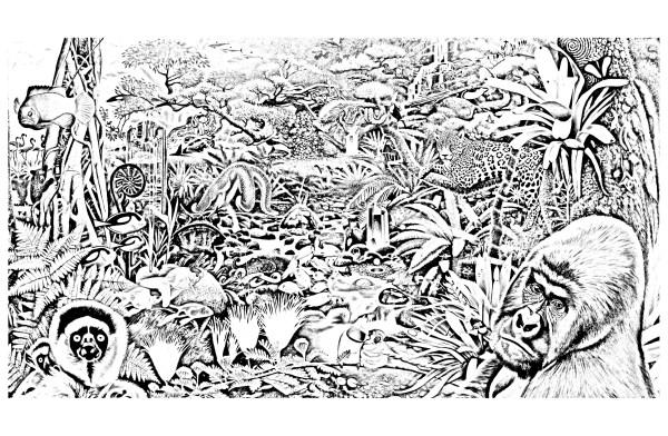 jungle coloring page # 10
