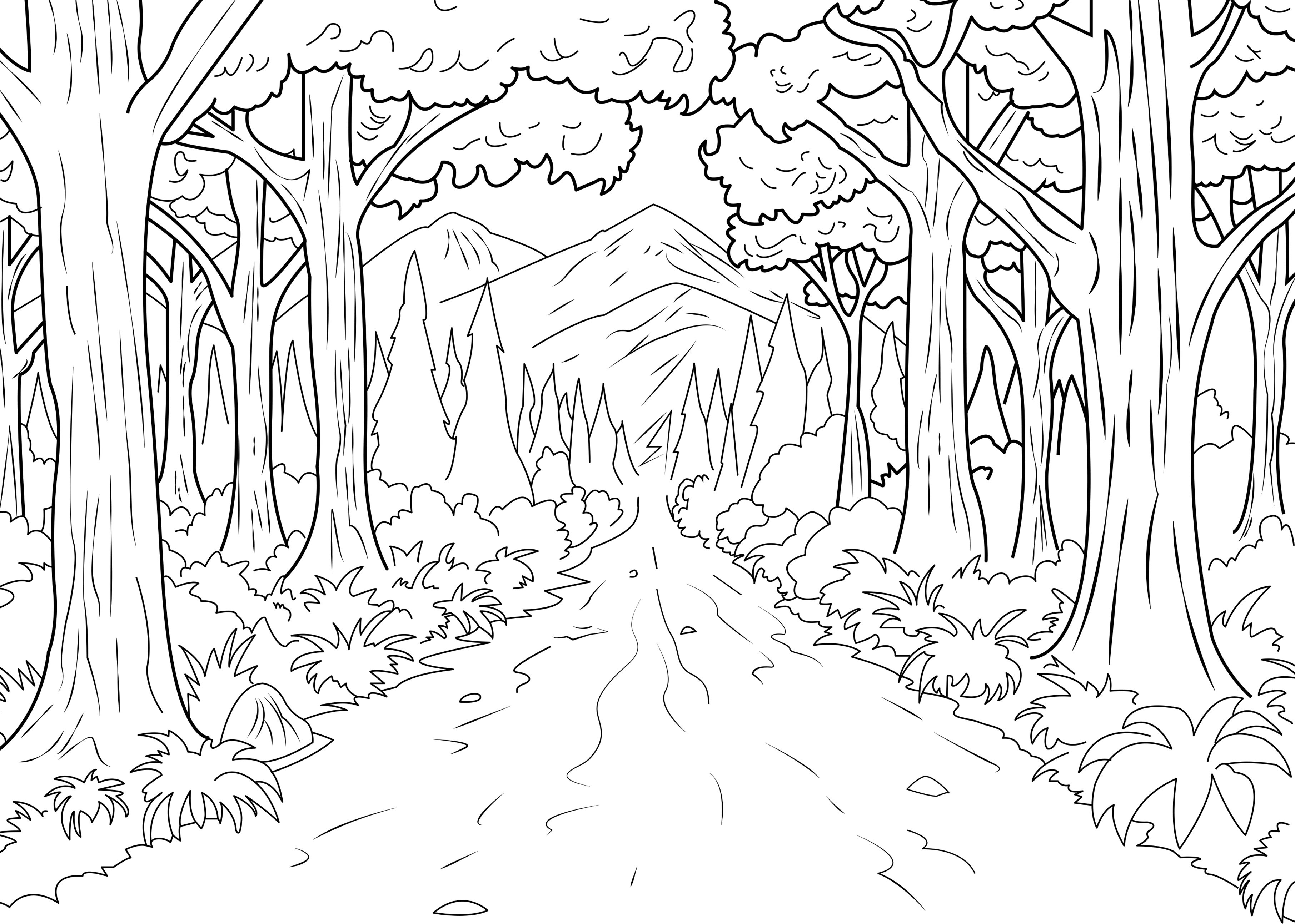 Forest Celine Jungle Forest Coloring Pages For Adults