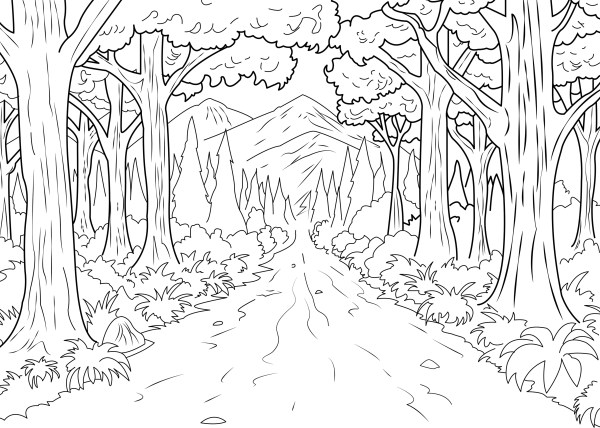 forest coloring page # 1
