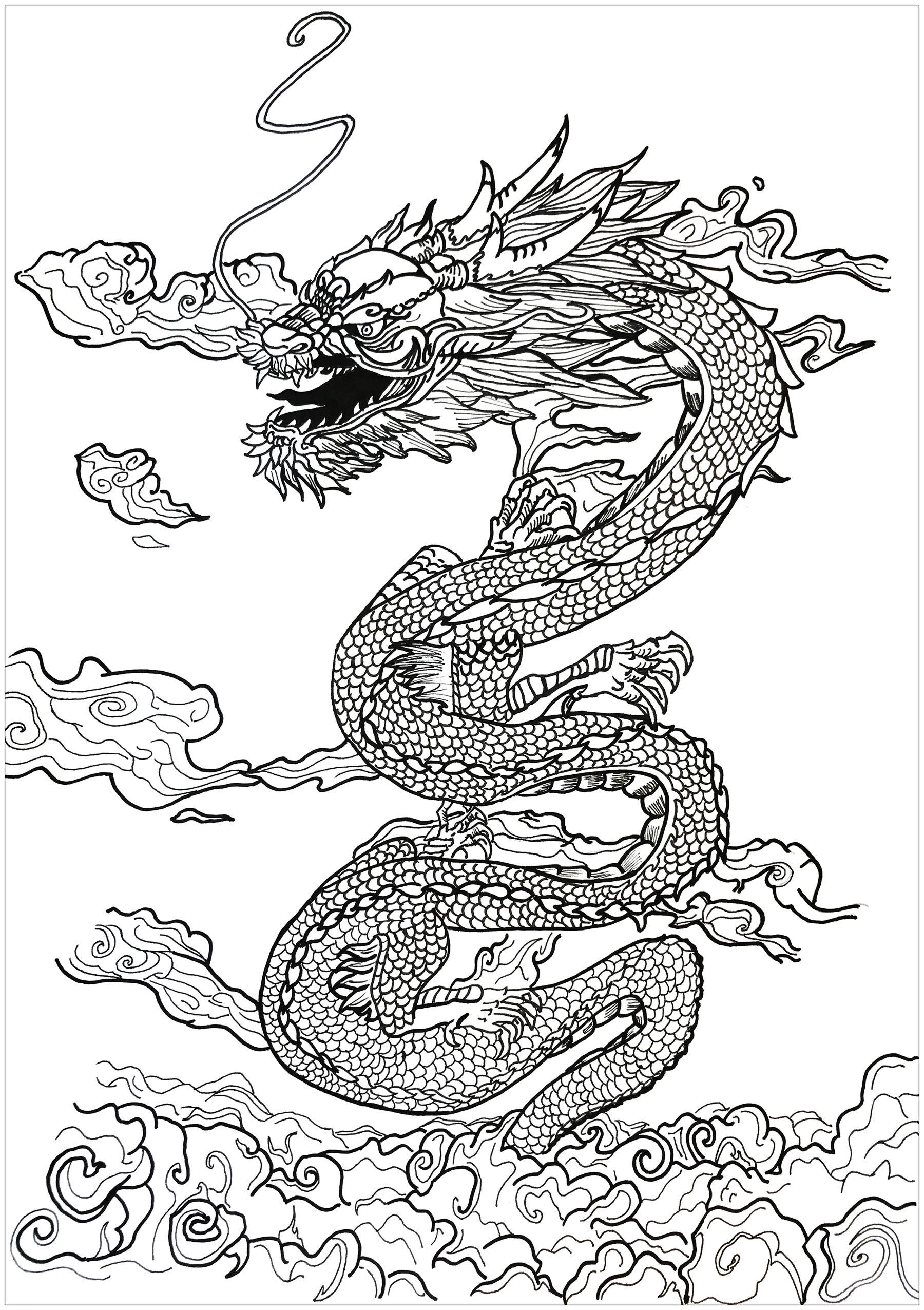 Dragon Asian Inspiration Valentin Coloring Pages For Adults