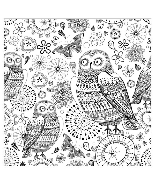 printable owl coloring pages # 13